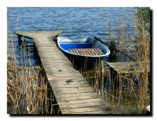 Anibal-Affiliates-RealtyNetWorth-Lake-Shannon-why-I-sell-lakefront-rowboat-by-dock