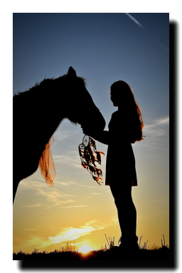 Anibal-Group-LLC-Realty_NetWorth-Mentoring-Marriages-horse-2